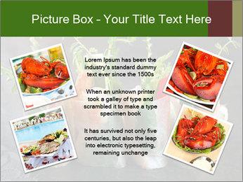Spring Rolls PowerPoint Template - Slide 24