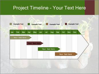 Spring Rolls PowerPoint Template - Slide 25