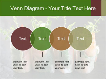 Spring Rolls PowerPoint Template - Slide 32