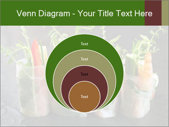 Spring Rolls PowerPoint Template - Slide 34