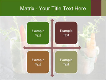 Spring Rolls PowerPoint Template - Slide 37