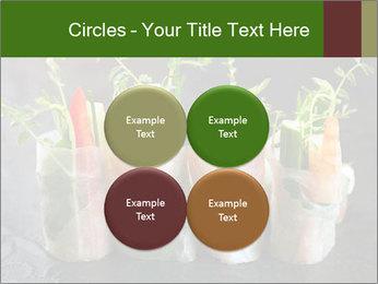Spring Rolls PowerPoint Template - Slide 38