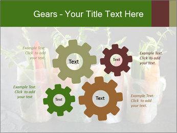Spring Rolls PowerPoint Template - Slide 47