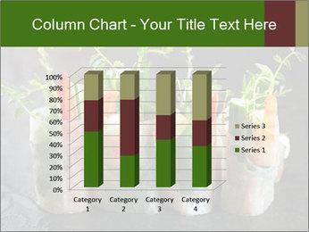 Spring Rolls PowerPoint Template - Slide 50