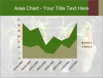 Spring Rolls PowerPoint Template - Slide 53