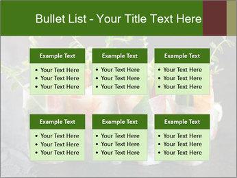 Spring Rolls PowerPoint Template - Slide 56