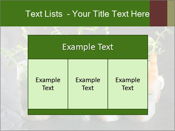 Spring Rolls PowerPoint Template - Slide 59