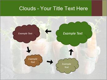 Spring Rolls PowerPoint Template - Slide 72