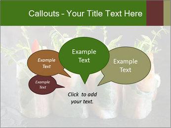 Spring Rolls PowerPoint Template - Slide 73