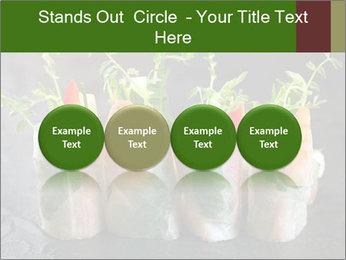 Spring Rolls PowerPoint Template - Slide 76