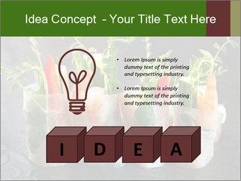 Spring Rolls PowerPoint Template - Slide 80