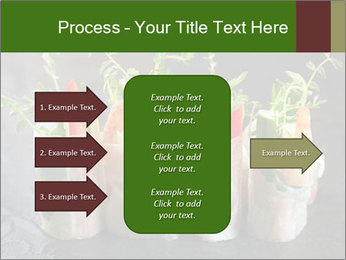 Spring Rolls PowerPoint Template - Slide 85