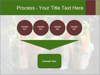 Spring Rolls PowerPoint Template - Slide 93