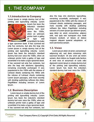0000089666 Word Template - Page 3