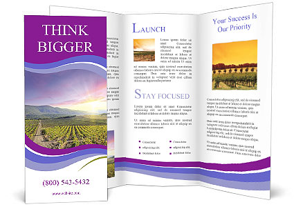 0000089669 Brochure Template