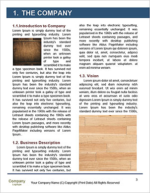 0000089670 Word Template - Page 3