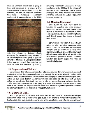0000089670 Word Template - Page 4