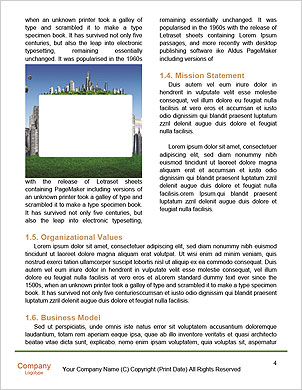 0000089678 Word Template - Page 4