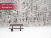 Park Covered In Snow PowerPoint Template