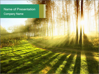Sunshine In Forest PowerPoint Template - Slide 1