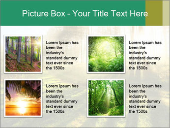 Sunshine In Forest PowerPoint Template - Slide 14