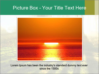 Sunshine In Forest PowerPoint Template - Slide 15