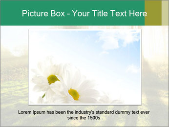 Sunshine In Forest PowerPoint Template - Slide 16