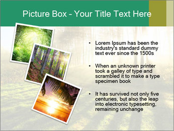 Sunshine In Forest PowerPoint Template - Slide 17