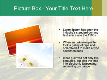 Sunshine In Forest PowerPoint Template - Slide 20