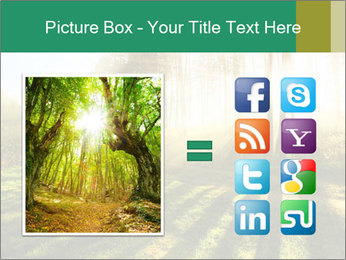 Sunshine In Forest PowerPoint Template - Slide 21