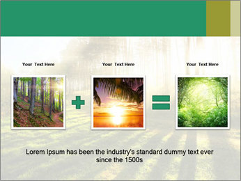 Sunshine In Forest PowerPoint Template - Slide 22