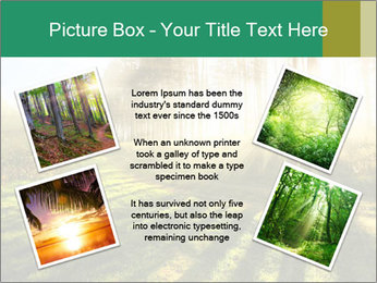 Sunshine In Forest PowerPoint Template - Slide 24