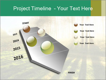 Sunshine In Forest PowerPoint Template - Slide 26