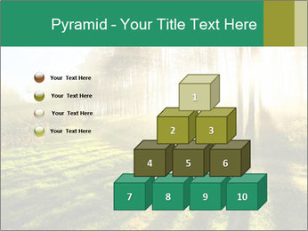 Sunshine In Forest PowerPoint Template - Slide 31