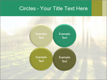 Sunshine In Forest PowerPoint Template - Slide 38