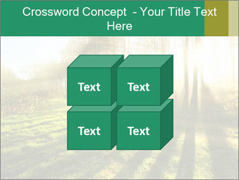 Sunshine In Forest PowerPoint Template - Slide 39