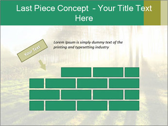 Sunshine In Forest PowerPoint Template - Slide 46