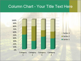 Sunshine In Forest PowerPoint Template - Slide 50
