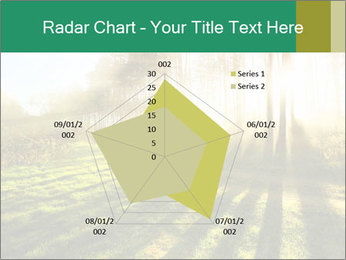 Sunshine In Forest PowerPoint Template - Slide 51