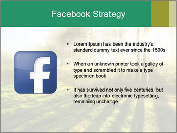 Sunshine In Forest PowerPoint Template - Slide 6