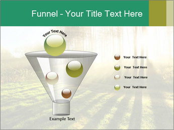 Sunshine In Forest PowerPoint Template - Slide 63