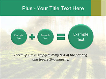 Sunshine In Forest PowerPoint Template - Slide 75