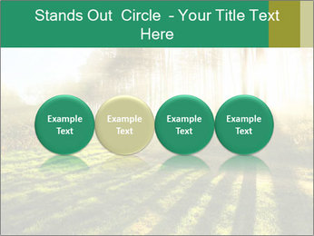 Sunshine In Forest PowerPoint Template - Slide 76
