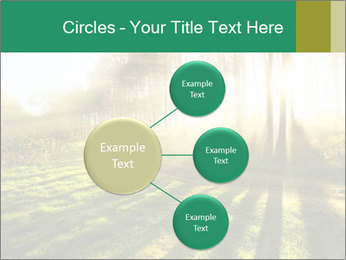 Sunshine In Forest PowerPoint Template - Slide 79
