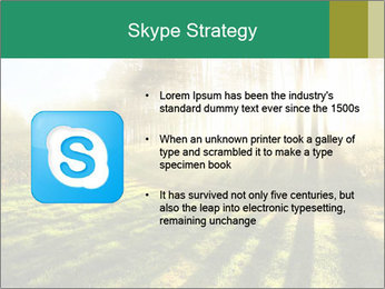 Sunshine In Forest PowerPoint Template - Slide 8