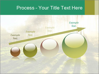 Sunshine In Forest PowerPoint Template - Slide 87