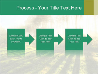 Sunshine In Forest PowerPoint Template - Slide 88