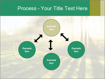 Sunshine In Forest PowerPoint Template - Slide 91