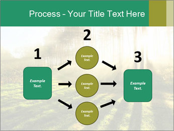 Sunshine In Forest PowerPoint Template - Slide 92