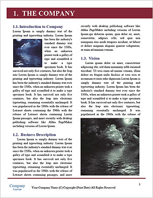 0000089691 Word Template - Page 3